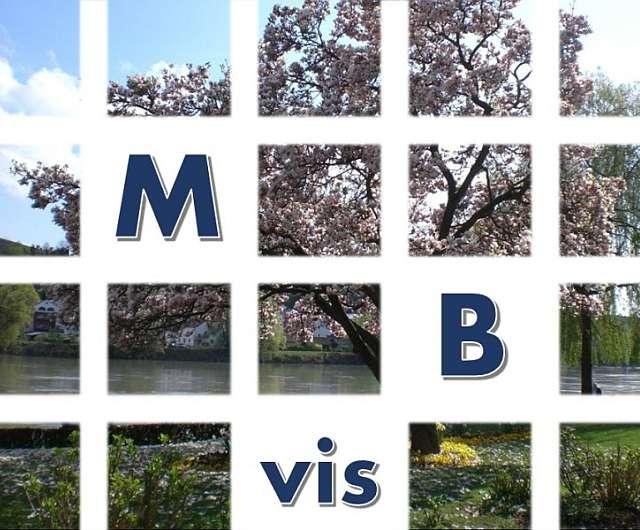 2017 multidisziplinäre Beratungsstelle für visuelle Wahrnehmung – Bayern (Zusammenarbeit mit der LMU München)